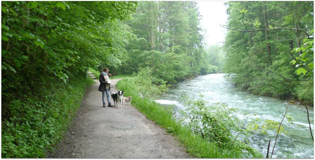 Königsseer Fußweg