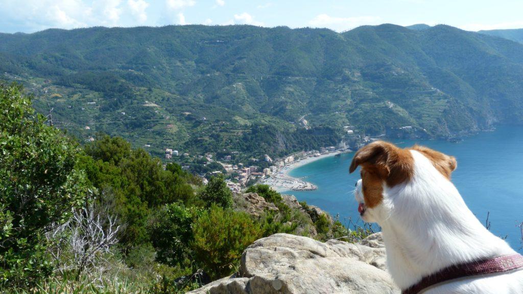 Blick auf Monterosso blog